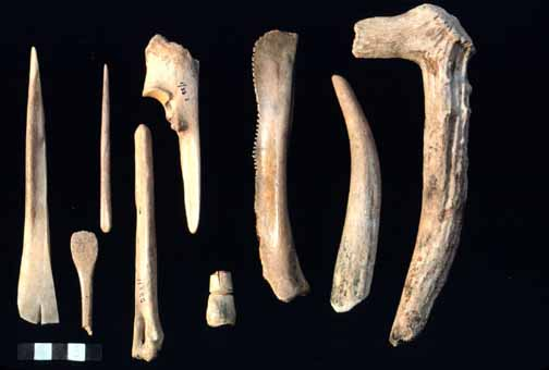 Bone tools used by humansEarly Human Beings