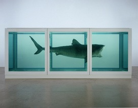"Damien Hirst's ""The Physical Impossibility of Death in the Mind of Someone Living"""